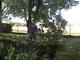 Galeria Ogródek-pomiar ogródka