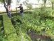 Galeria Ogródek-przygotowanie