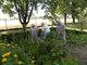 Galeria Ogródek-karczowanie
